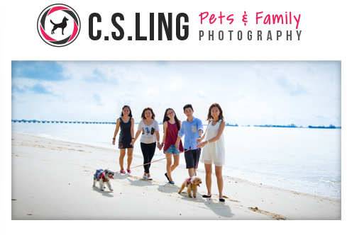 Pets & Fmaily Photography